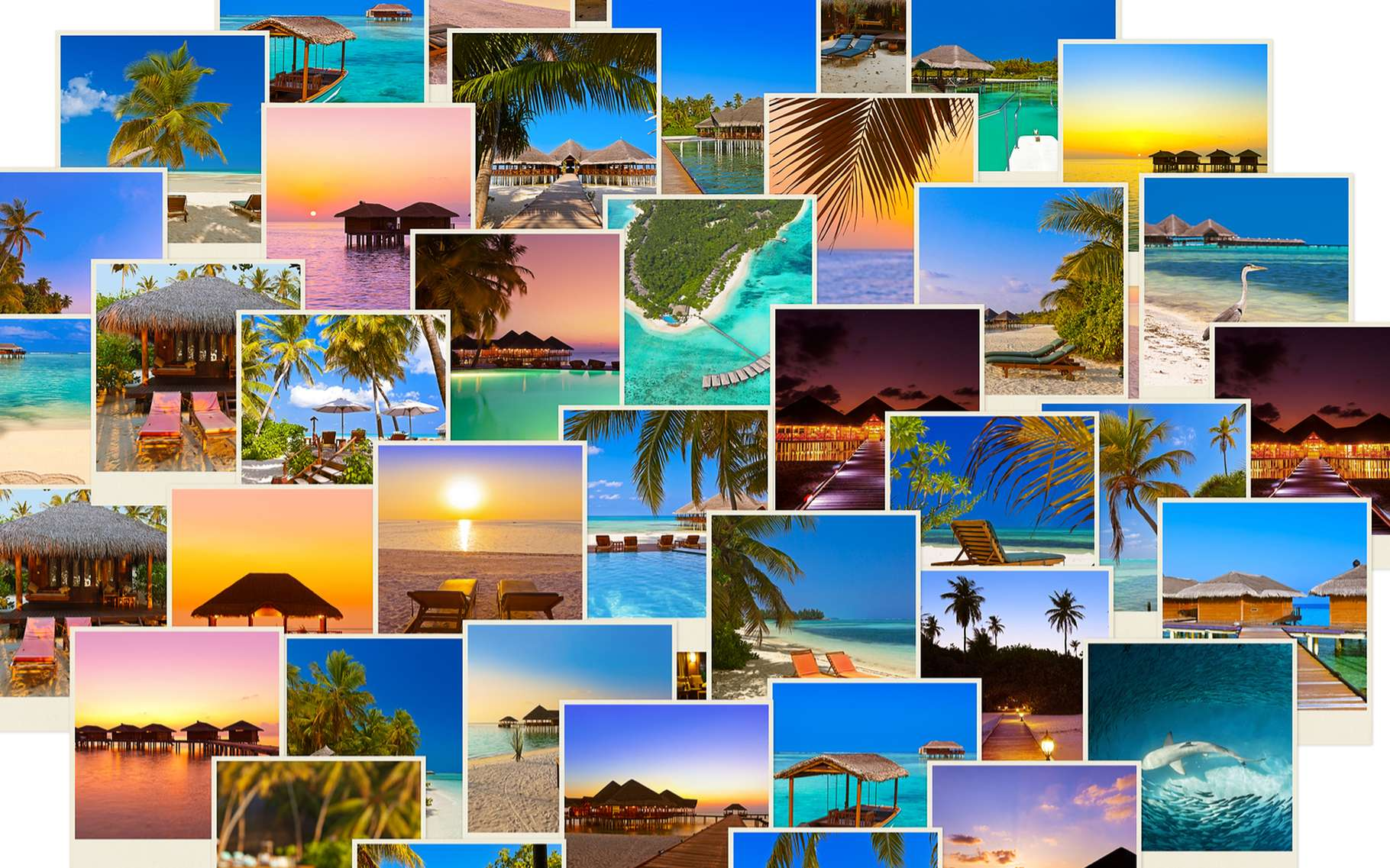 Les critères essentiels pour un référencement optimal sur Google Images